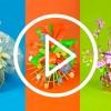 videos demostracion packaging pascua pasqua primavera
